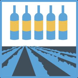 Cursus Wijnlanden - een introductie