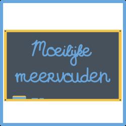 Cursus Nederlands - moeilijke meervouden